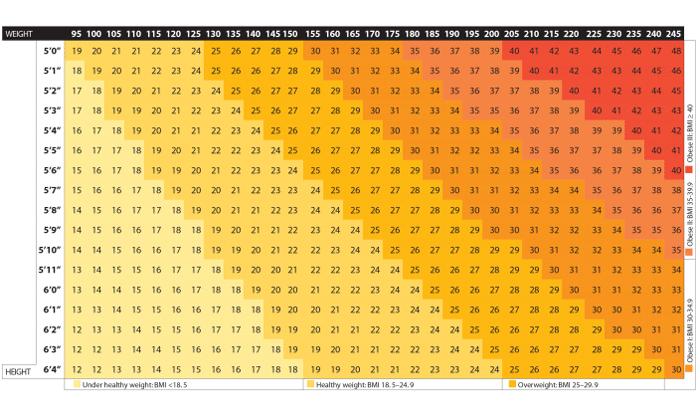 Body Mass Index Calculator 4
