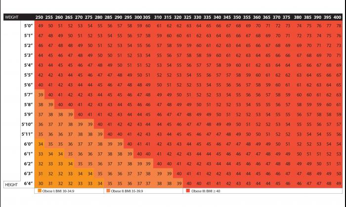 Body Mass Index Calculator 6